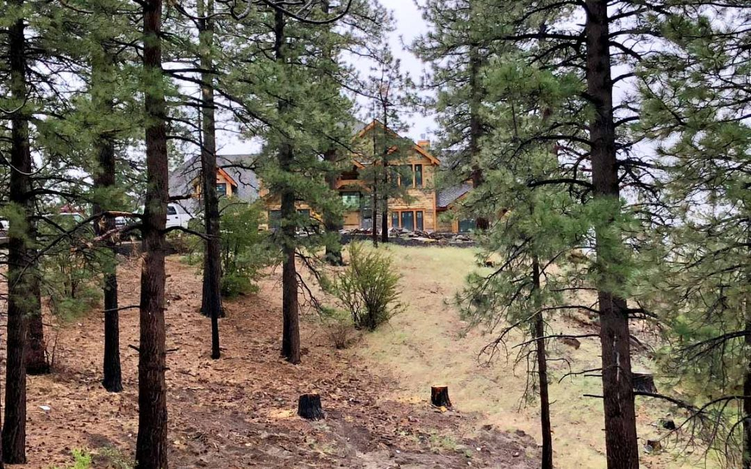 """Craft """"Carriage House""""Wrightwood, CA"""
